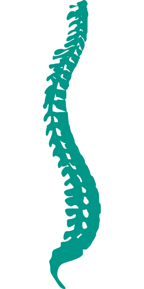 Chiropractor in Mount Prospect for back pain treatment